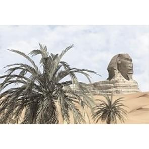 Декор Luxor голубой 20x30 -1