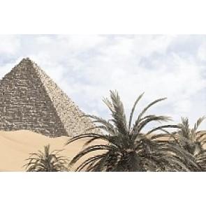 Декор Luxor голубой 20x30 -5