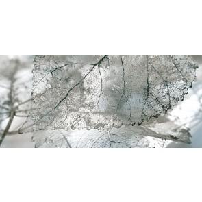 Декор Magia 23x50 сірий - 2