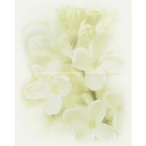 Панно Andrea 50x40 квітка