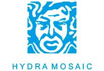 Hydra mosaic